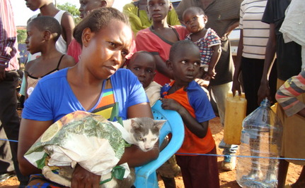 Taking Care of Pets and Stray Dogs in the Slums of Kampala
