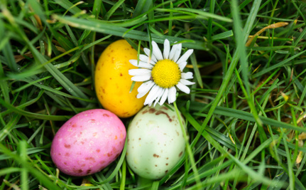 How to Create an Earth-Friendly, Ethical Easter Basket