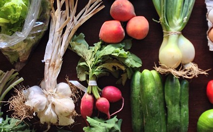 How Being a Part of a CSA Has Made Me Eat Better