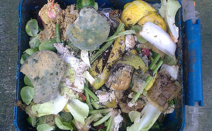 Does Your Restaurant Donate Surplus Food, or Toss It?