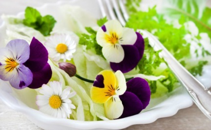 11 Edible Flowers That You Can Grow at Home