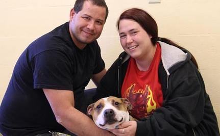 Sheer Chance Reunites Family with Beloved Dog Lost in Superstorm Sandy