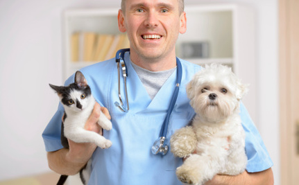 Blood Transfusions and Severed Tails: 4 Horrifying Stories From the Vet's Office