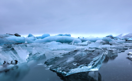 Invasive Species More Likely Now That Polar Ice Is Melting