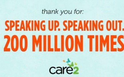 Amazing! 200 Million Signatures and Other Care2 Success Stories