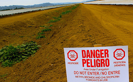 Live Near a Field with Pesticides? Children Could Be at Higher Risk for Autism
