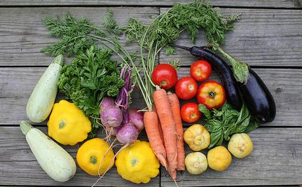 Veganic Gardening: Here's Why it's the Future!