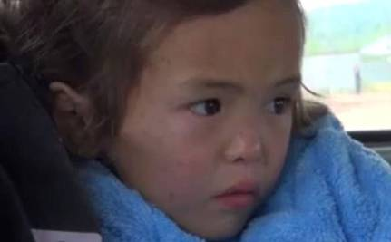 Puppy Protects 3-Year-Old Lost for 11 Days in Bear Country