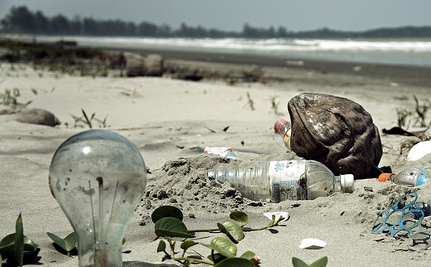 Why Trashed Beaches Are Expensive