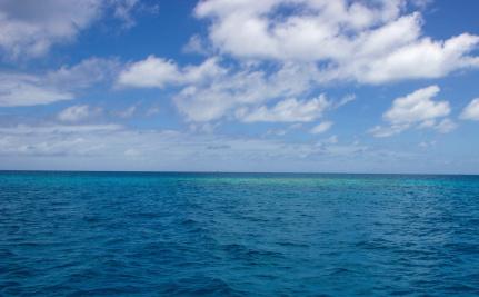 Worlds Biggest Ocean Reserve Established By Obama Care Causes - Biggest ocean in the world