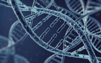 Why a Gay Gene isn't Important to the Gay Rights Fight