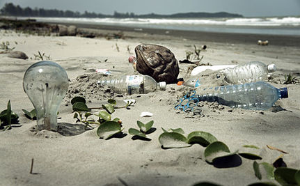What Has Happened to the Ocean's Plastic Trash?