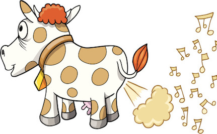 Can We Make Cows Less Gassy To Reduce How Much Methane They ...