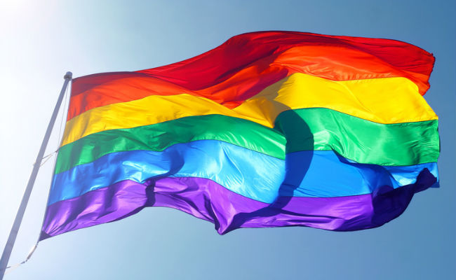 What Does The Rainbow Pride Flag Really Mean Care2 Causes