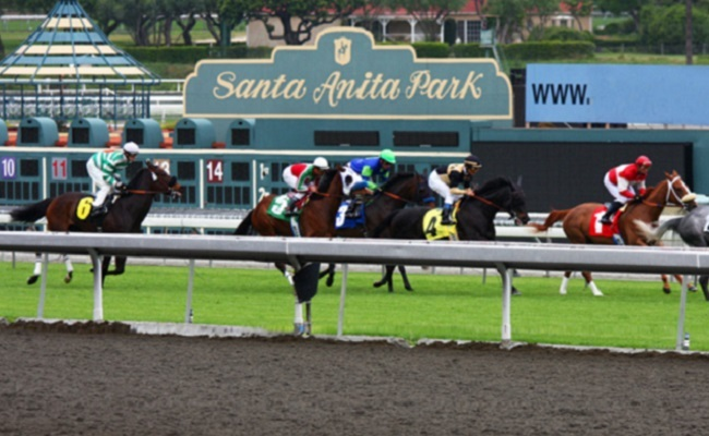 Santa Anita racecourse shuts after 21 equine fatalities in 10 weeks