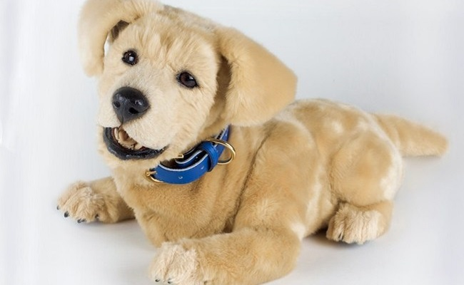 Are Robot Therapy Dogs As Effective As The Real Thing? | Care2 Causes