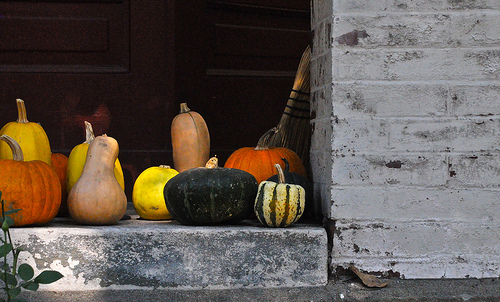 Fall Gourd Decorations