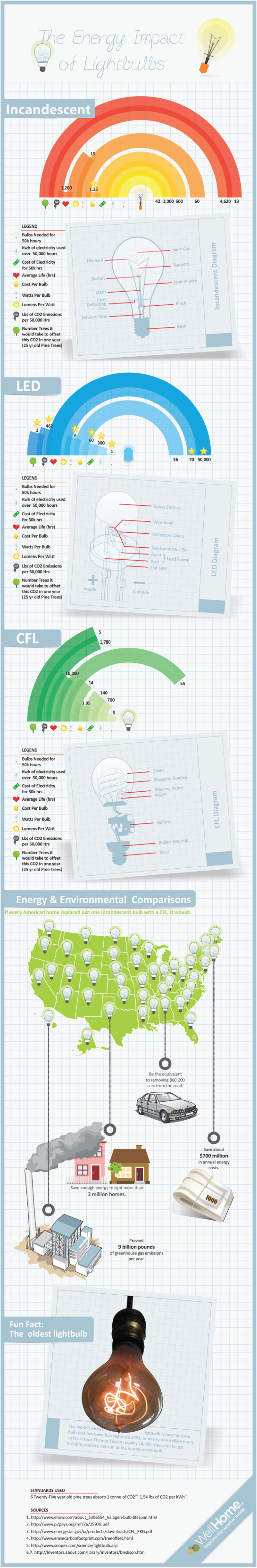 Wellhome Light Bulb Infographic