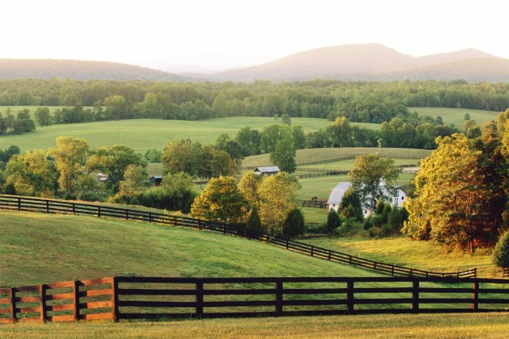 Charlottesville countryside by Robert Llewellyn