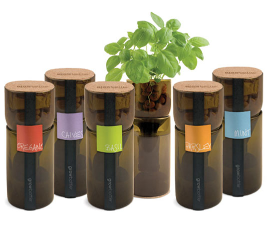Grow Bottle Herbs