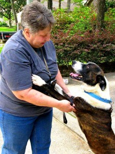 River is no longer afraid and jumps on his foster family for attention. His confidence is back!