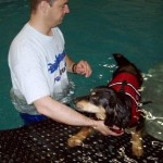 Gentle water therapy with Todd at ThinkPawsitiveDog.com