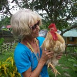 Marianne & Saddam, perhaps the oldest rooster in Thailand, who was rescued from the cooking pot many years ago.