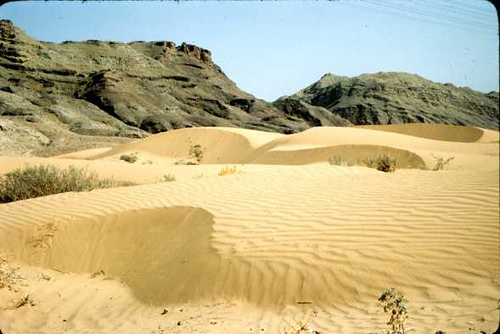 Agha_Jari