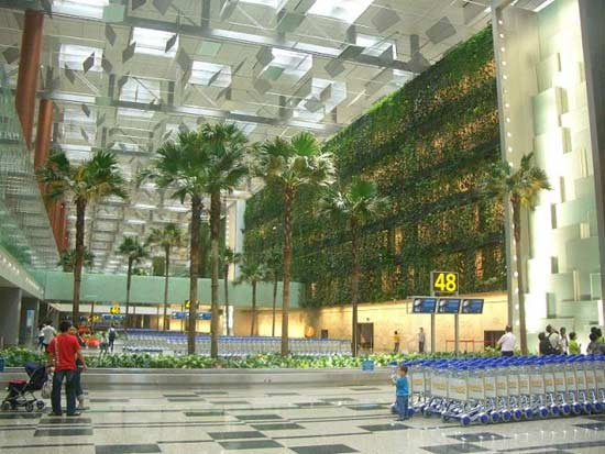 Singapore Living Wall