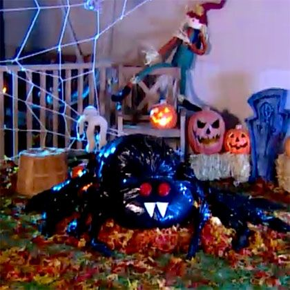 eco-friendly halloween decorations trash bag tarantula