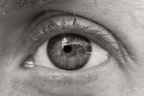 3D eye cells
