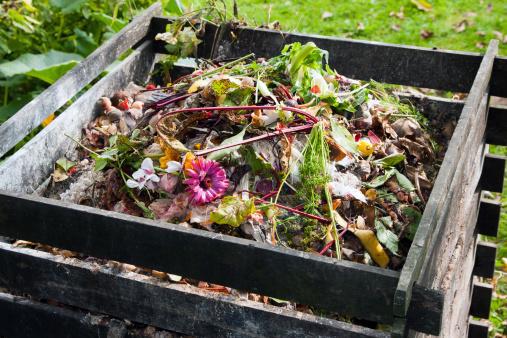 compost pile fertilizer