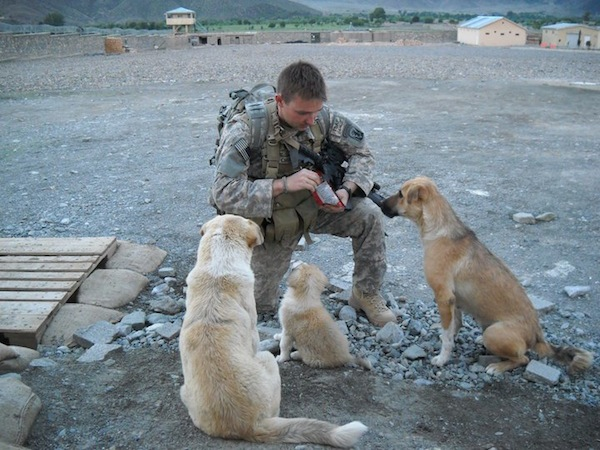 Soldier feeds stray dogs