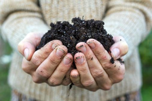 prepare garden soil