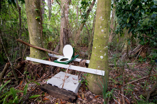 greener camping tips, forest toilet