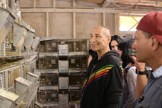 sam simon views cages