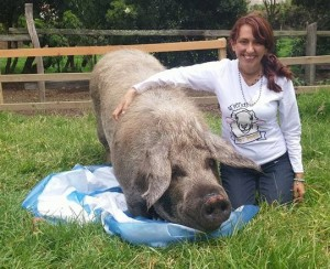 Pola the pig and Juliana. Photo Credit: Juliana's Animal Sanctuary