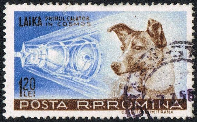 Romanian postage stamp honoring Laika. Photo credit: Neozoon