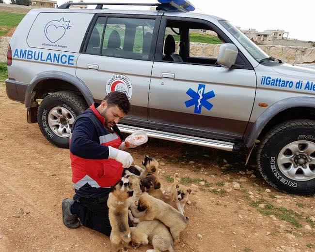 Mohammad Alaa Aljaleel with puppies