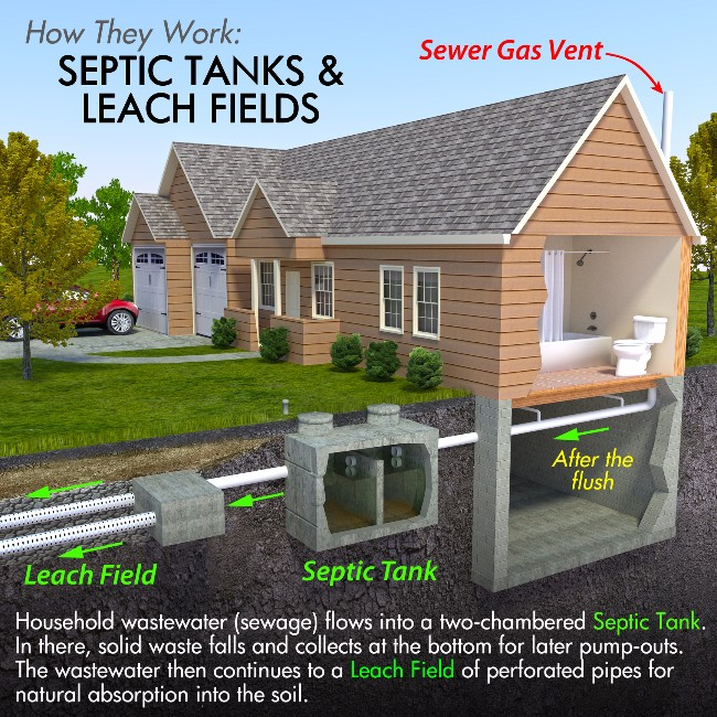 septic system graphic