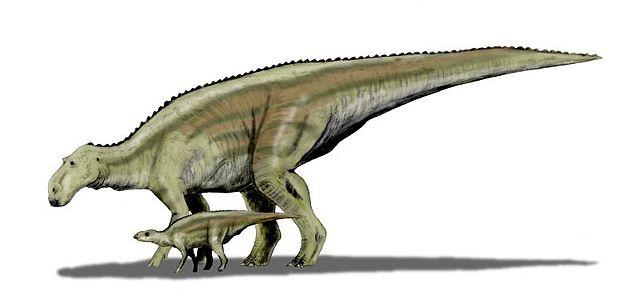 640px-Maiasaura_BW