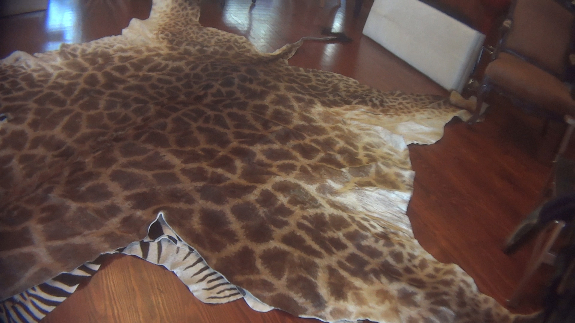 Giraffe Parts Investigation