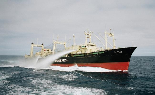 Nisshin-Maru