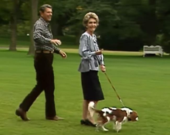 President Reagan walking dog