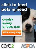 Click to Feed Pets in 