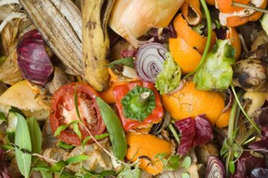 Build a Compost Heap