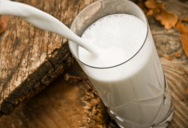 Organic Dairy Products May Protect You