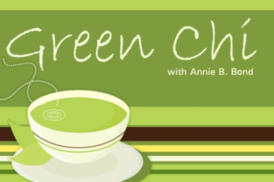 Green Chi:  Set the Tone with Cloth Napkins