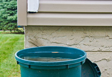 Old Trash Cans for Rainwater Collection