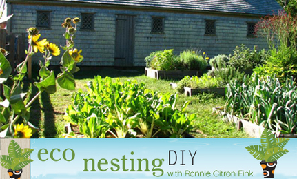 Kitchen Gardens: Edible, Elegant and Economical